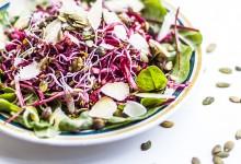 Salade coleslaw rouge