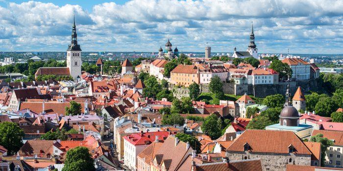 Tallinn Fine Art Pictures